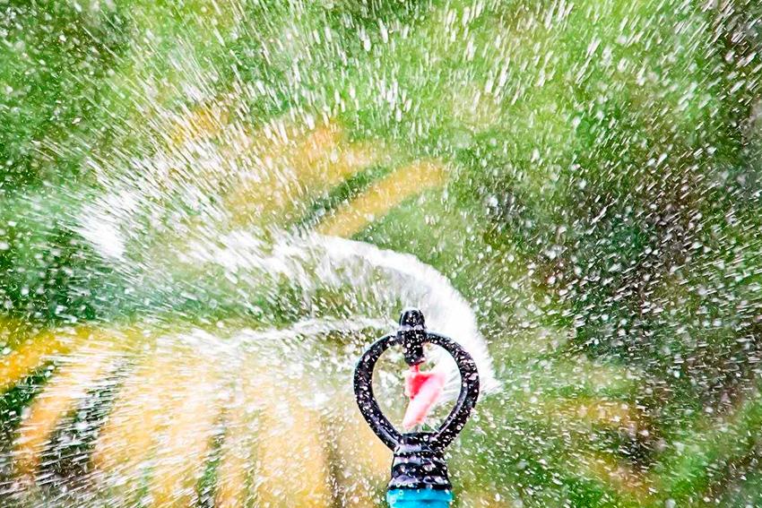 Eliminación de Microorganismos Patógenos - agua 2