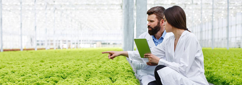 desinfectantes para agricultura - slide